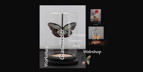 Glasvlinder - Art -backlinks