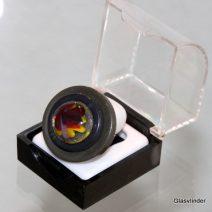 ringen glasvlinder