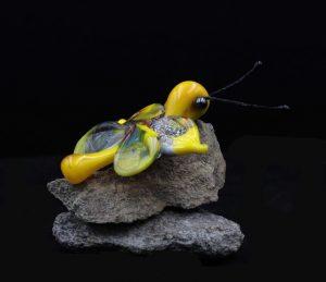 gele glasvlinder
