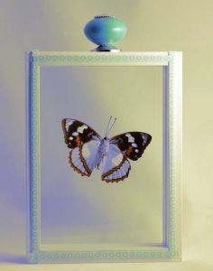 Vlinderkunst
